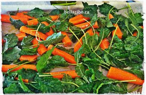bella cibo kale and carrots chips may